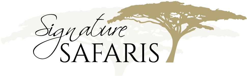 Signature Safaris