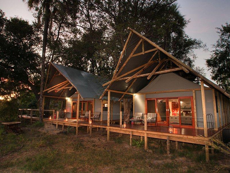 Chitabe-Lediba-Botswana-Okavango-family-unit