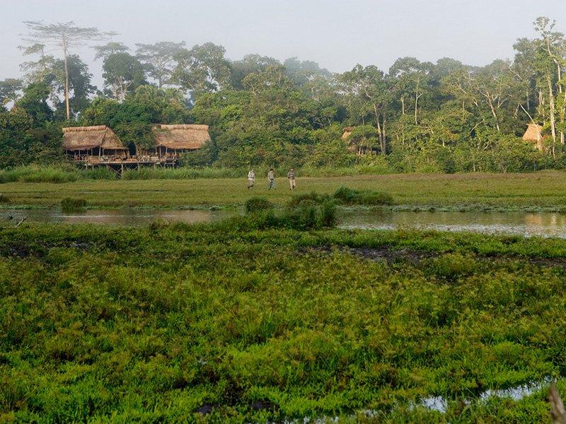 Congo-Odzala-Lango-Camp-setting