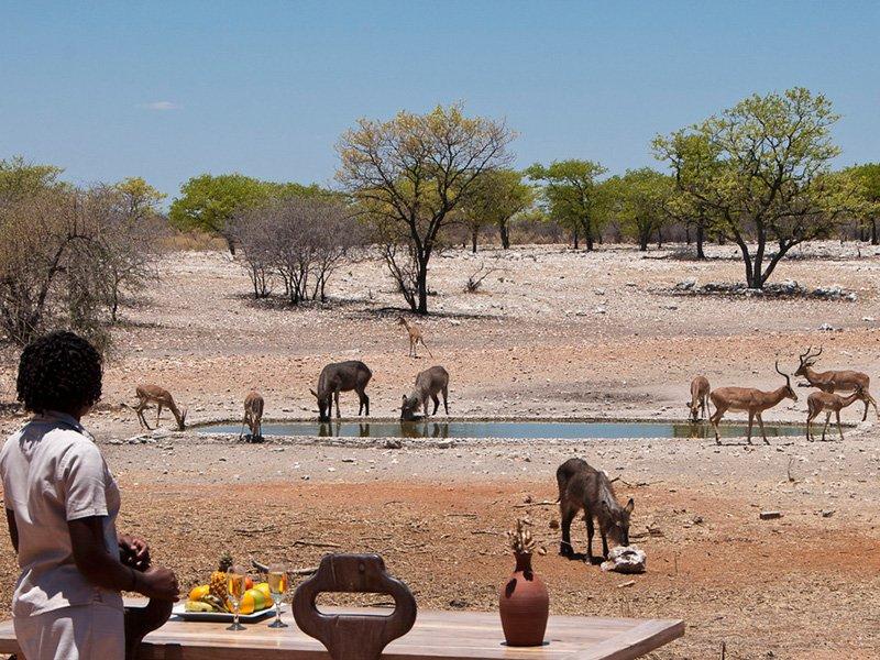Namibia-Etosha-Anderssons-Camp-Waterhole