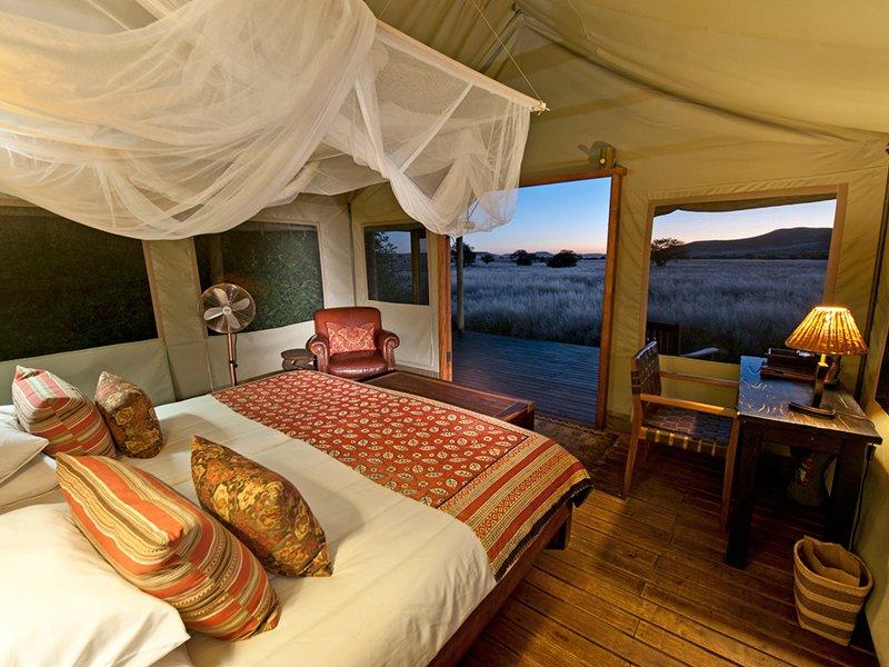 Namibia-Palmwag_Desert-Rhino