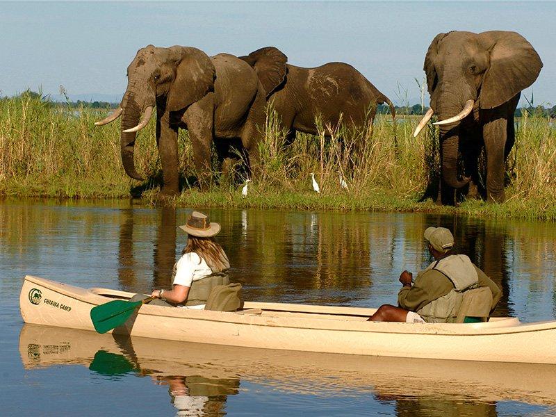 Zambia-Lower-Zambezi-Chiawa-Canoeing1