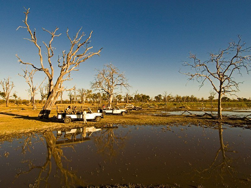 Bostwana-Okavango-Moremi-Camp-Moremi-Game-Drive