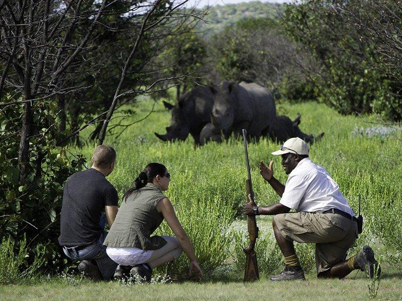 Namibia-Etosha-Ongava-Lodge-rhino-tracking
