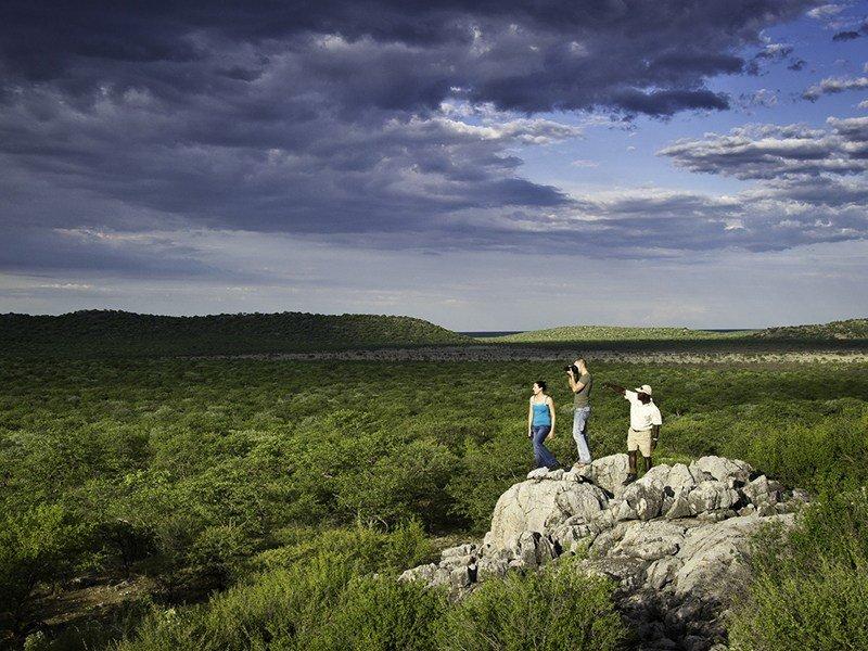 Namibia-Etosha-Ongava-Lodge-walking