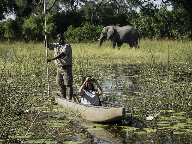 botswana-okavango-vumbura-plains-mokoro